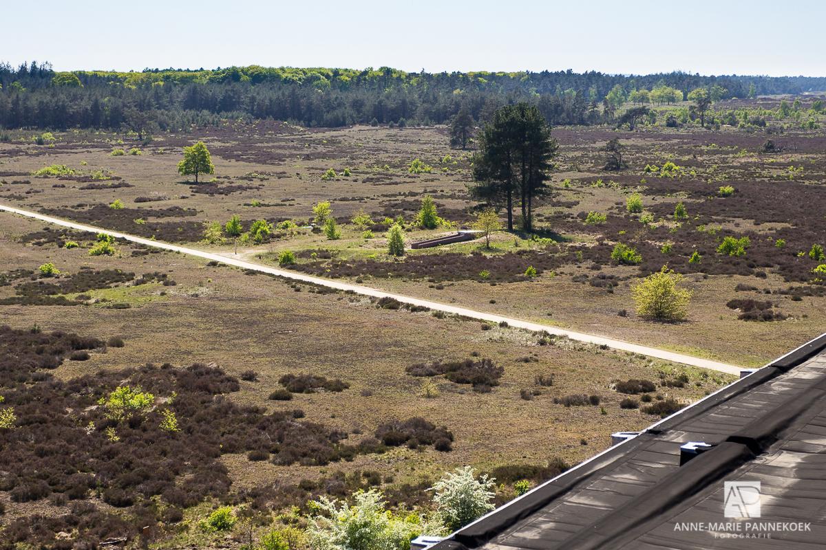 Radio Kootwijk uitzicht naar de bunker