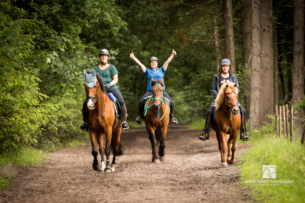 Eper paardenvierdaagse juni 2018