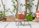 Cake Smash fotografie in Vaassen