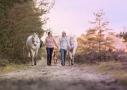 Paard en eigenaar